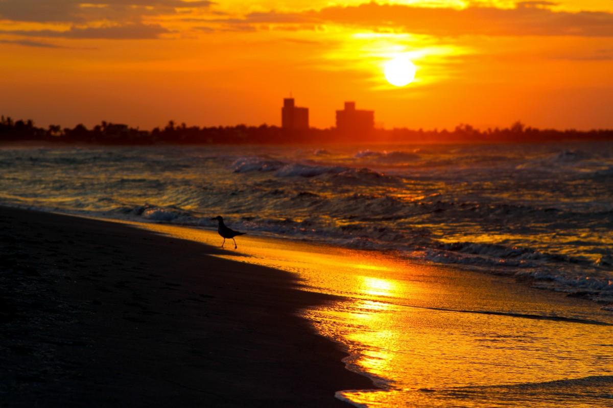 [Resim: sun_sunset_sea_sky_horizon_panoramic_sum...0566.jpg!d]