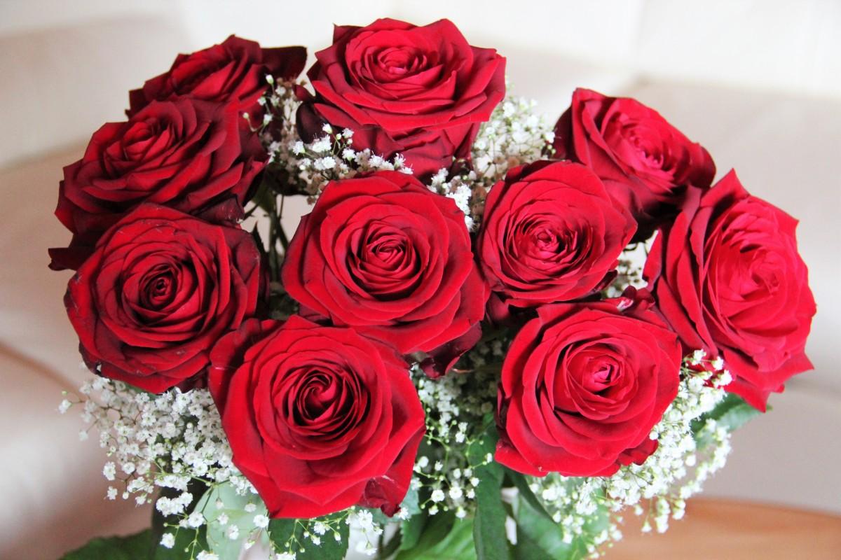 Картинки цветов на день рождения маме, надписью