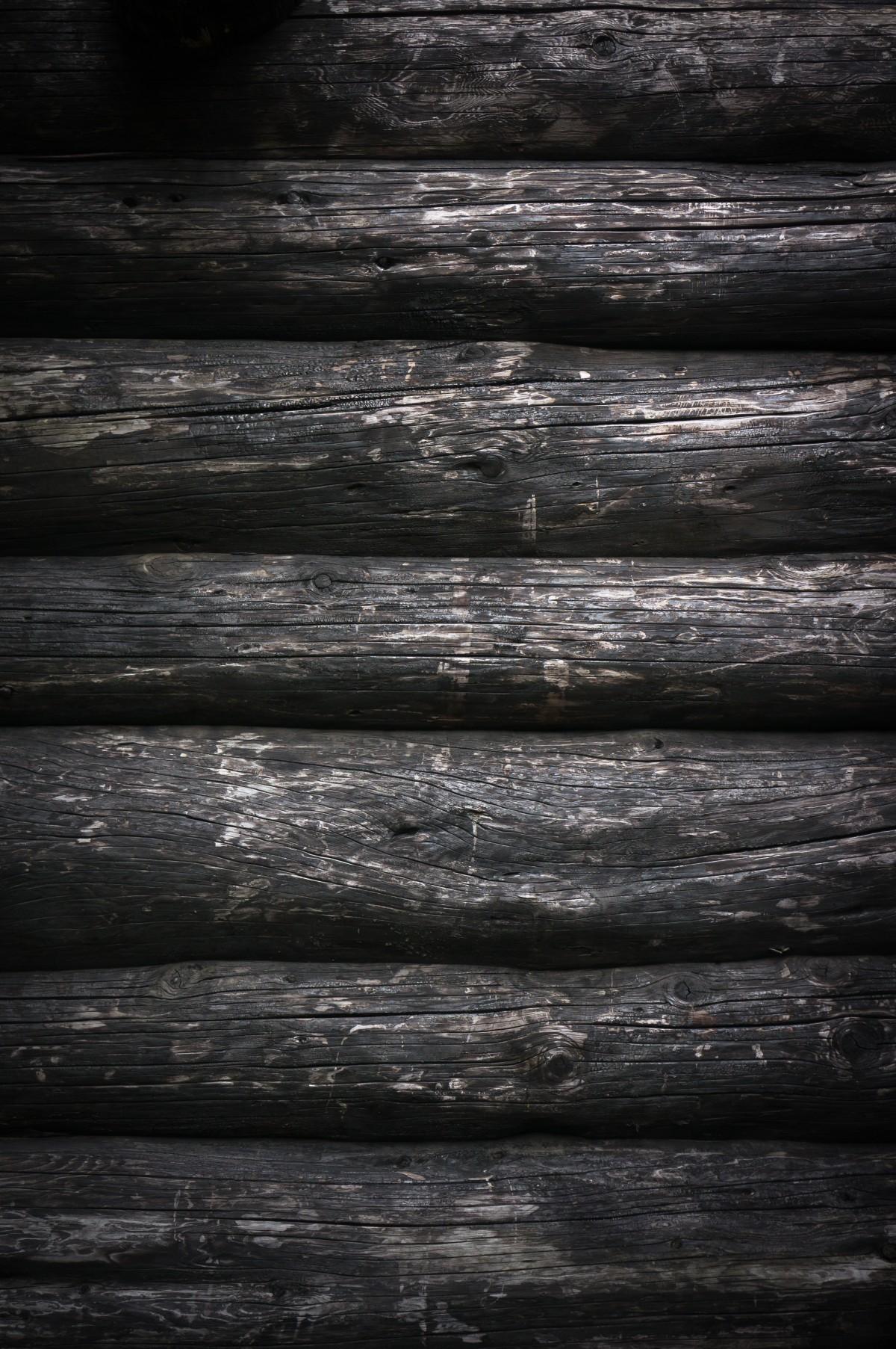 무료 이미지 : 나무, 분기, 검정색과 흰색, 목재, 조직, 내부 ...