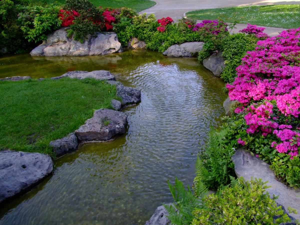 Fotos gratis paisaje naturaleza c sped prado estanque pastar bot nica zen jard n - Disenador de jardines ...