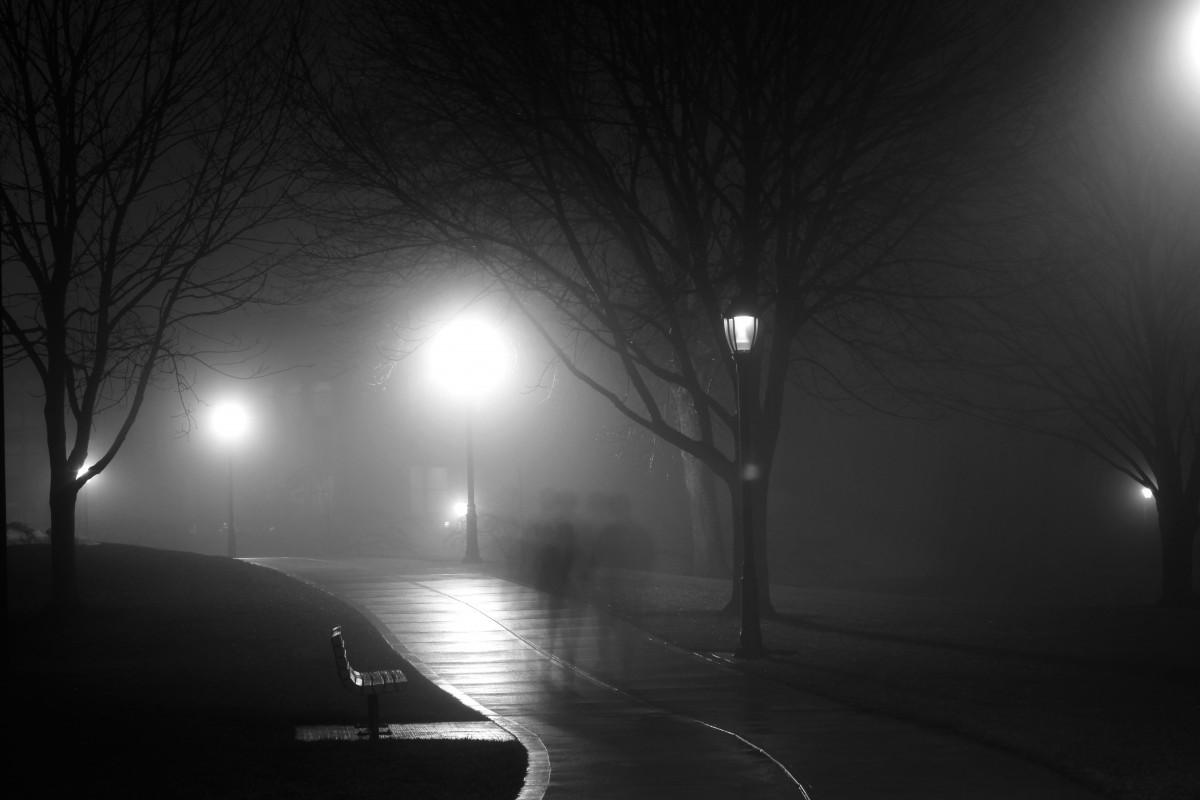 Марта прикольные, открытка с темной ночью