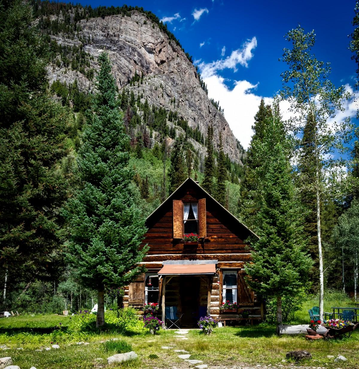 House Landscape Images: Free Images : Landscape, Nature, Forest, Wilderness, Lawn