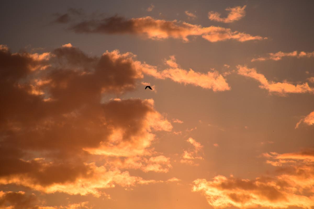 Kumpulan Gambar Sketsa Langit Awan Matahari
