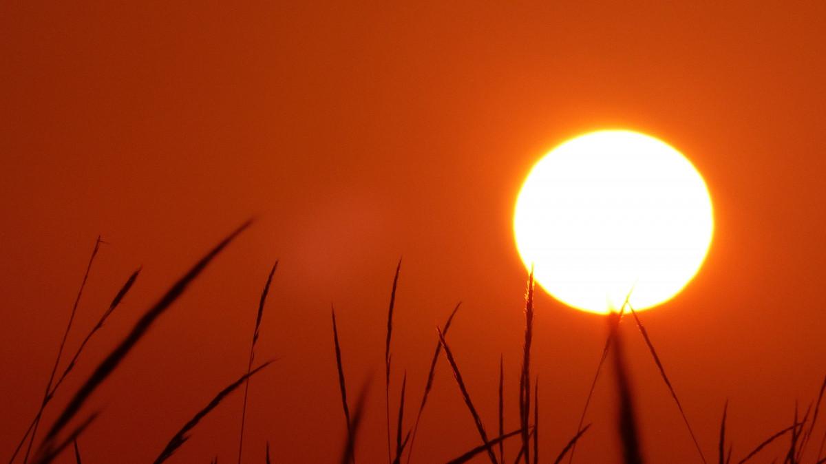 Солнечное тепло картинки