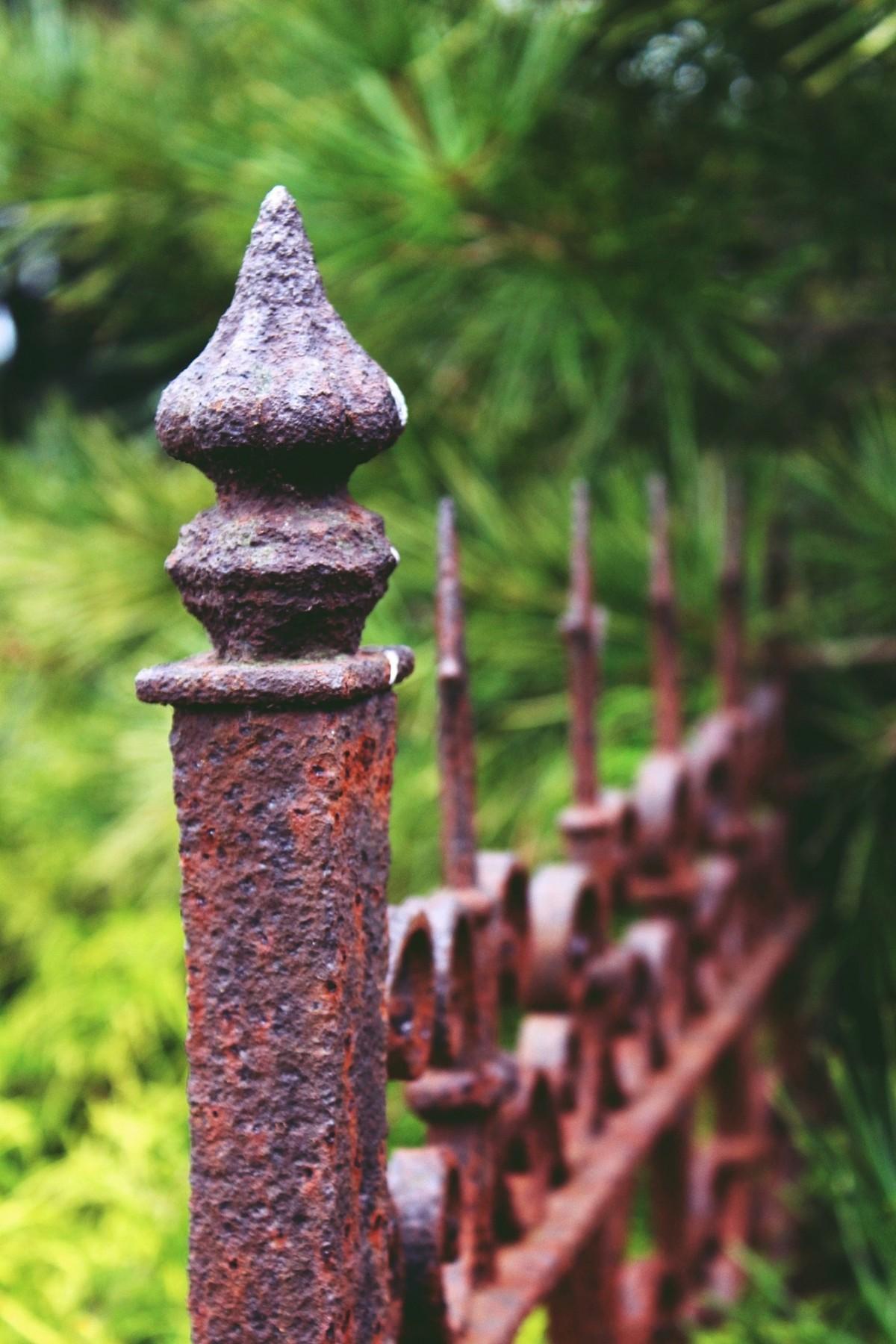 Kostenlose foto Zaun Perspektive Geländer Grün Metall