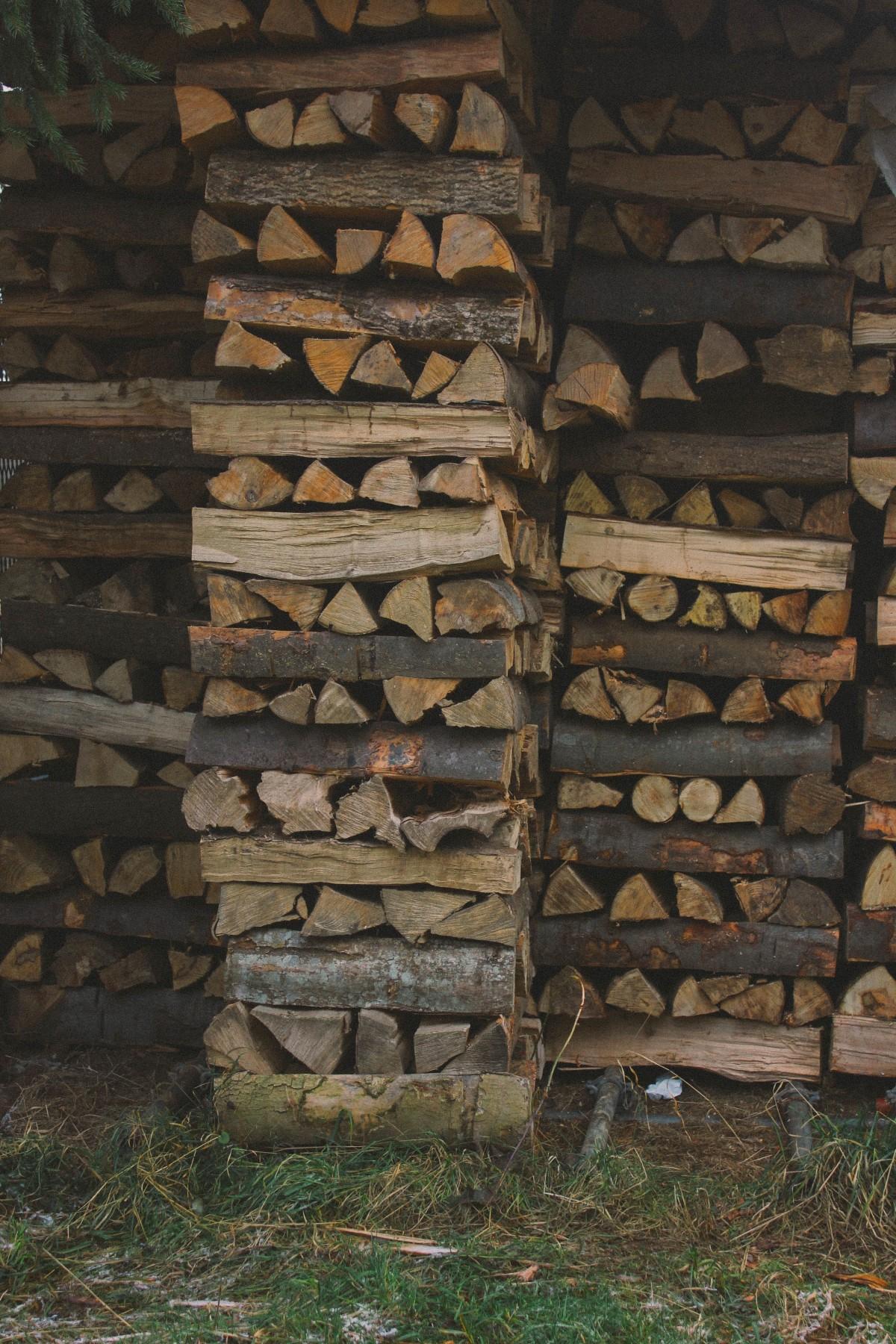 cabanon jardin en bois