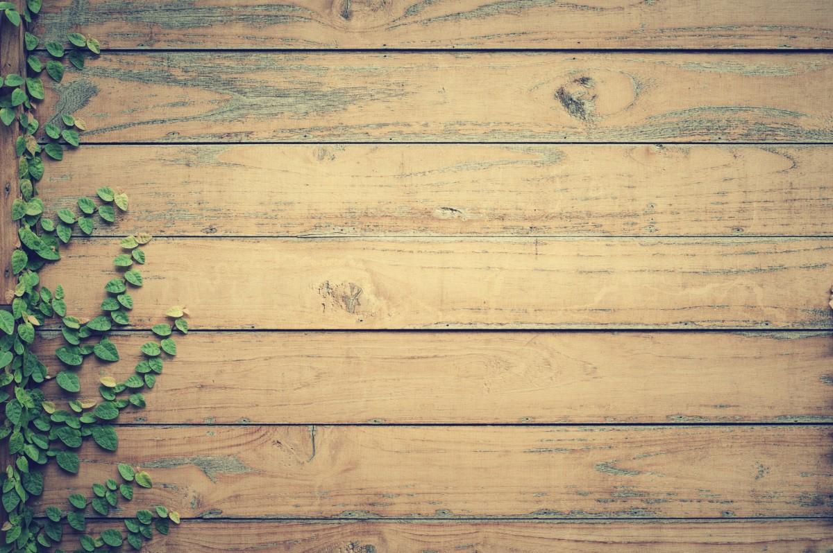 Fotos gratis textura tabl n piso pared pino madera - Maderas decorativas para paredes ...