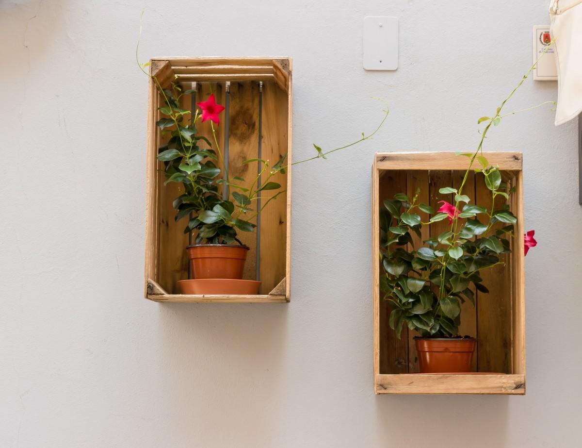 Images gratuites contour bois fen tre vieux mur art for Contour fenetre bois