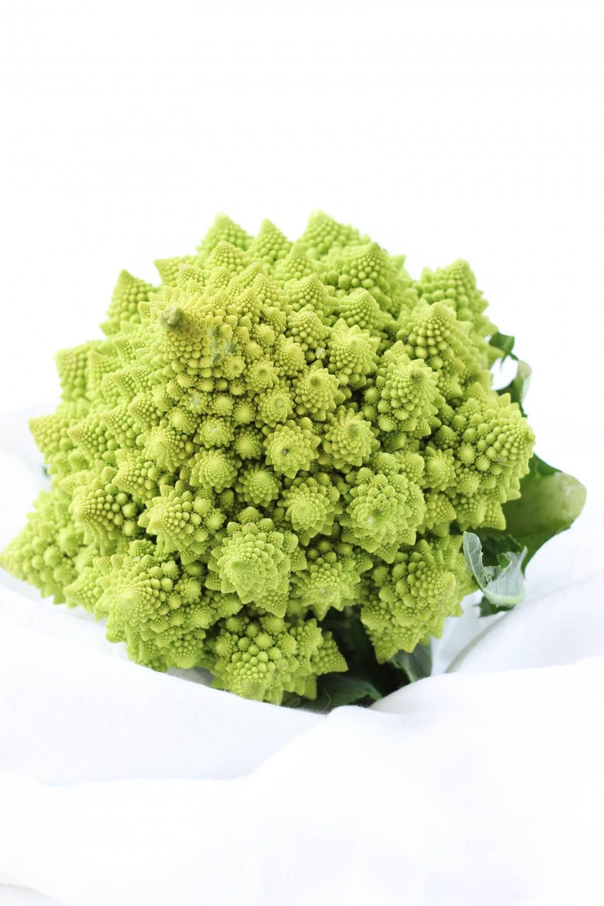 图片素材 厂 餐饮 绿色 草本植物 生产 西兰花 开花植物 陆地植物 叶蔬菜 3285x4927