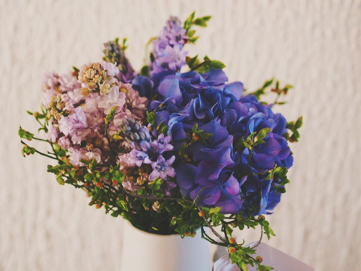 Free images blossom petal blue marriage flora lavender blossom plant flower purple petal bouquet izmirmasajfo