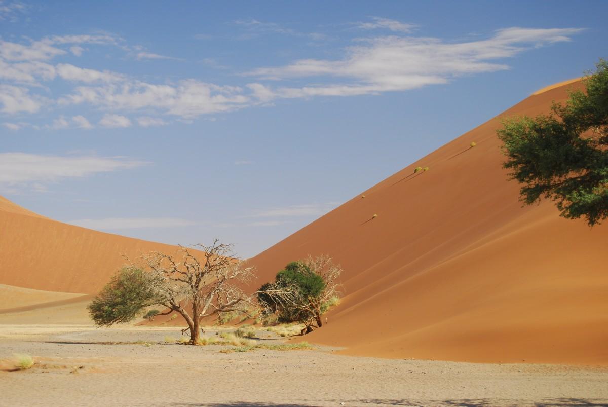 Free Images Landscape Desert Valley Sand Dune Dry Red Plain Grassland Plateau Habitat