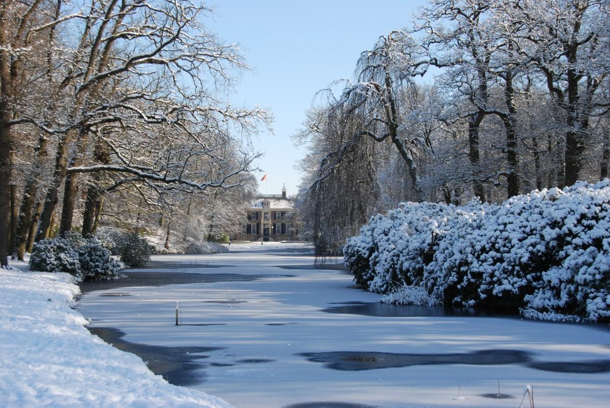Images gratuites paysage arbre eau la nature for t - Photos de neige gratuites ...