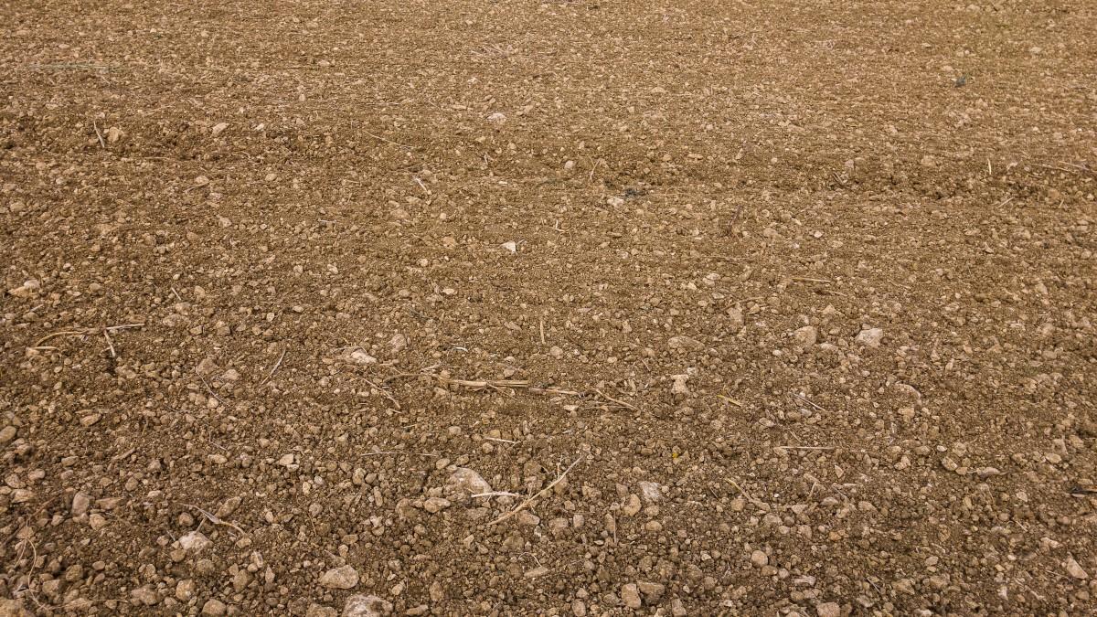 Fotos gratis c sped textura acera piso asfalto for Nivelar piso de tierra