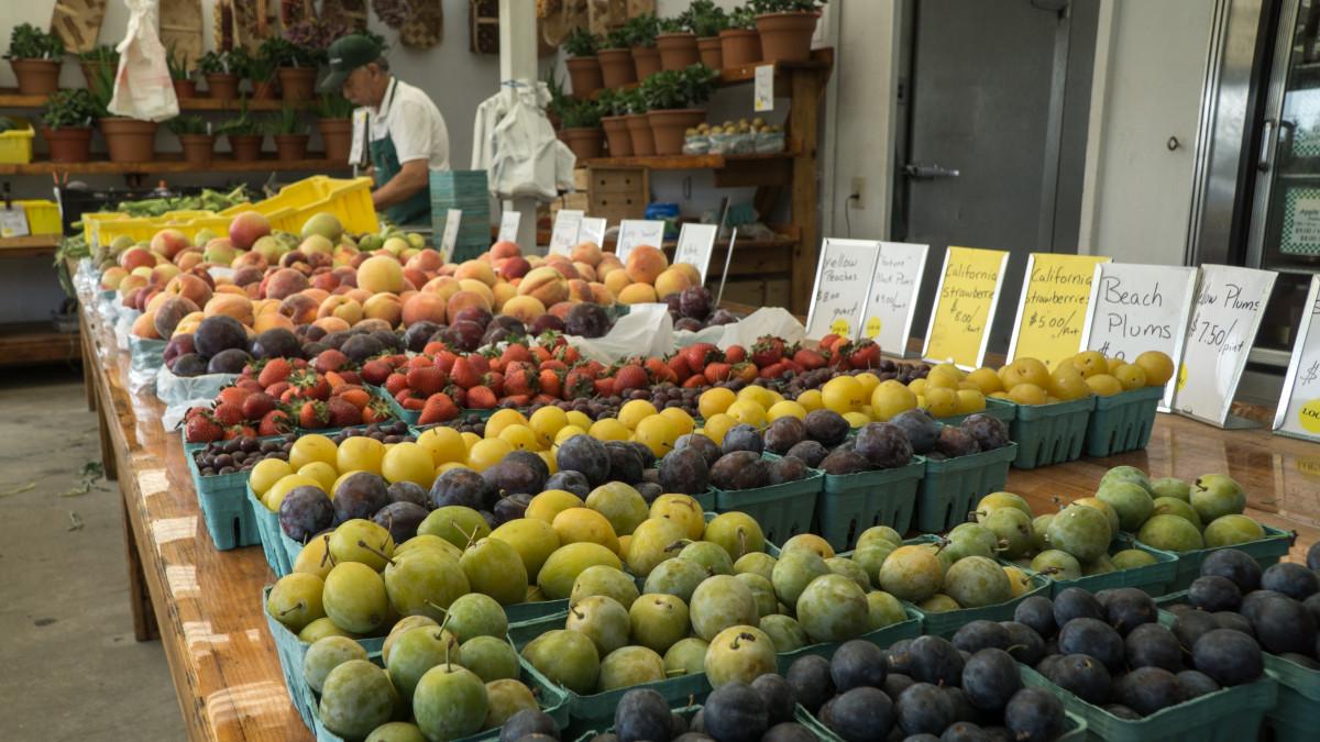 preserve use of fruits market How to start a fresh juice business 2017 juice orange-fruits juice image by vladimir melnik from a roadside stand, farmers market, city festival, carnival.