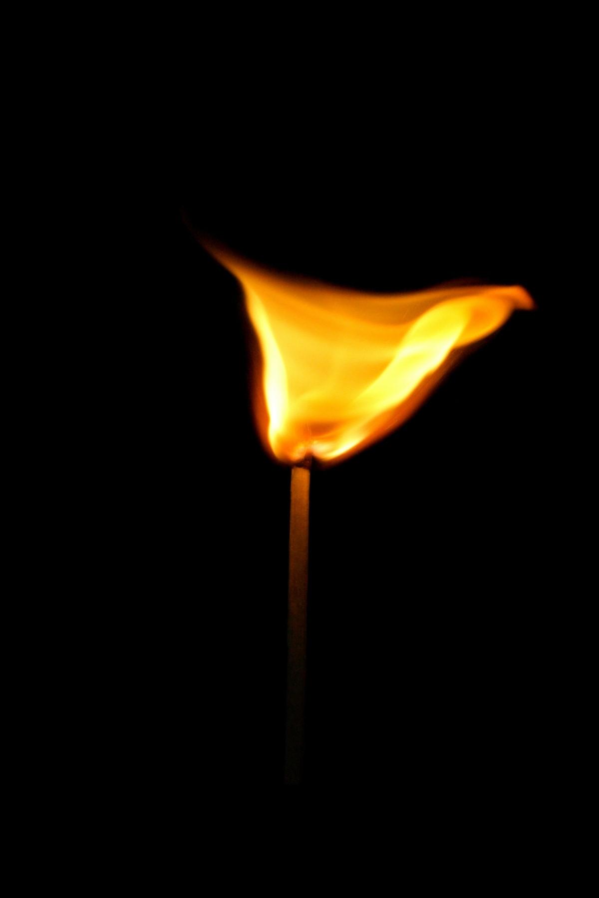 Gambar : cahaya, kayu, gelap, hitam, lilin, penerangan ...