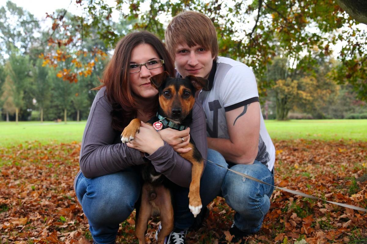 Новым годом, семья собачников картинки