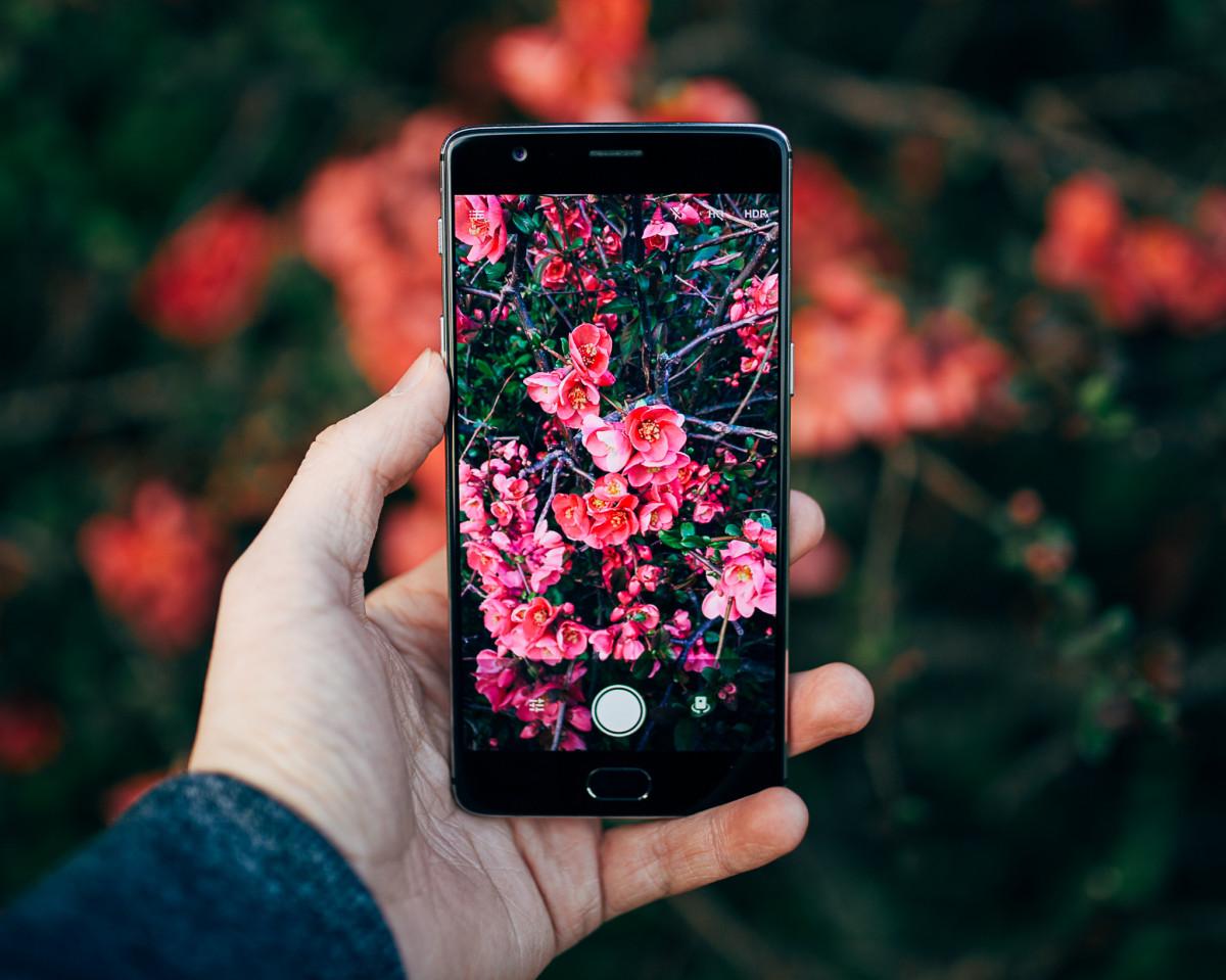 Гражданская, красивые картинки сфотографированные на телефон