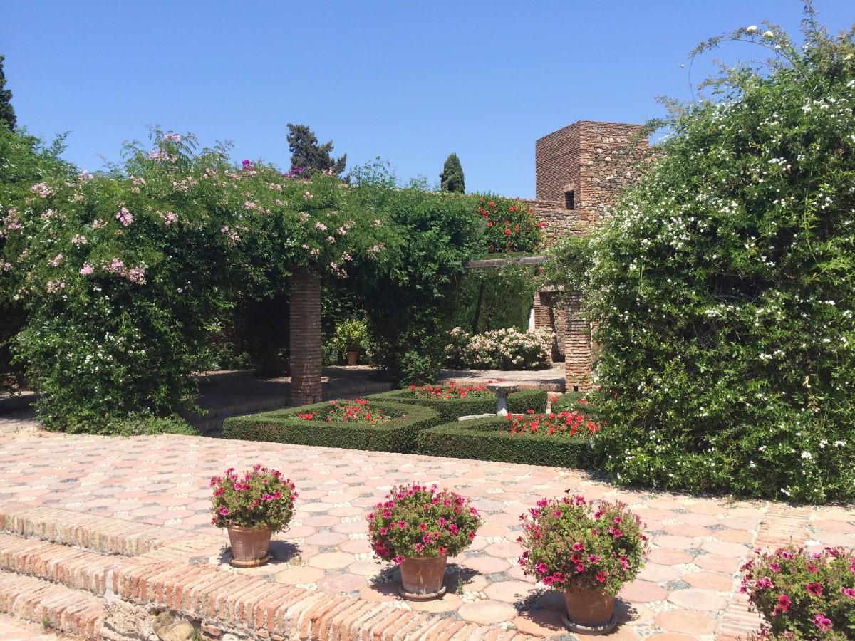 Fotos gratis flor pasarela pueblo rosa cuenco patio interior jard n flores paisajismo - Ley propiedad horizontal patio interior ...