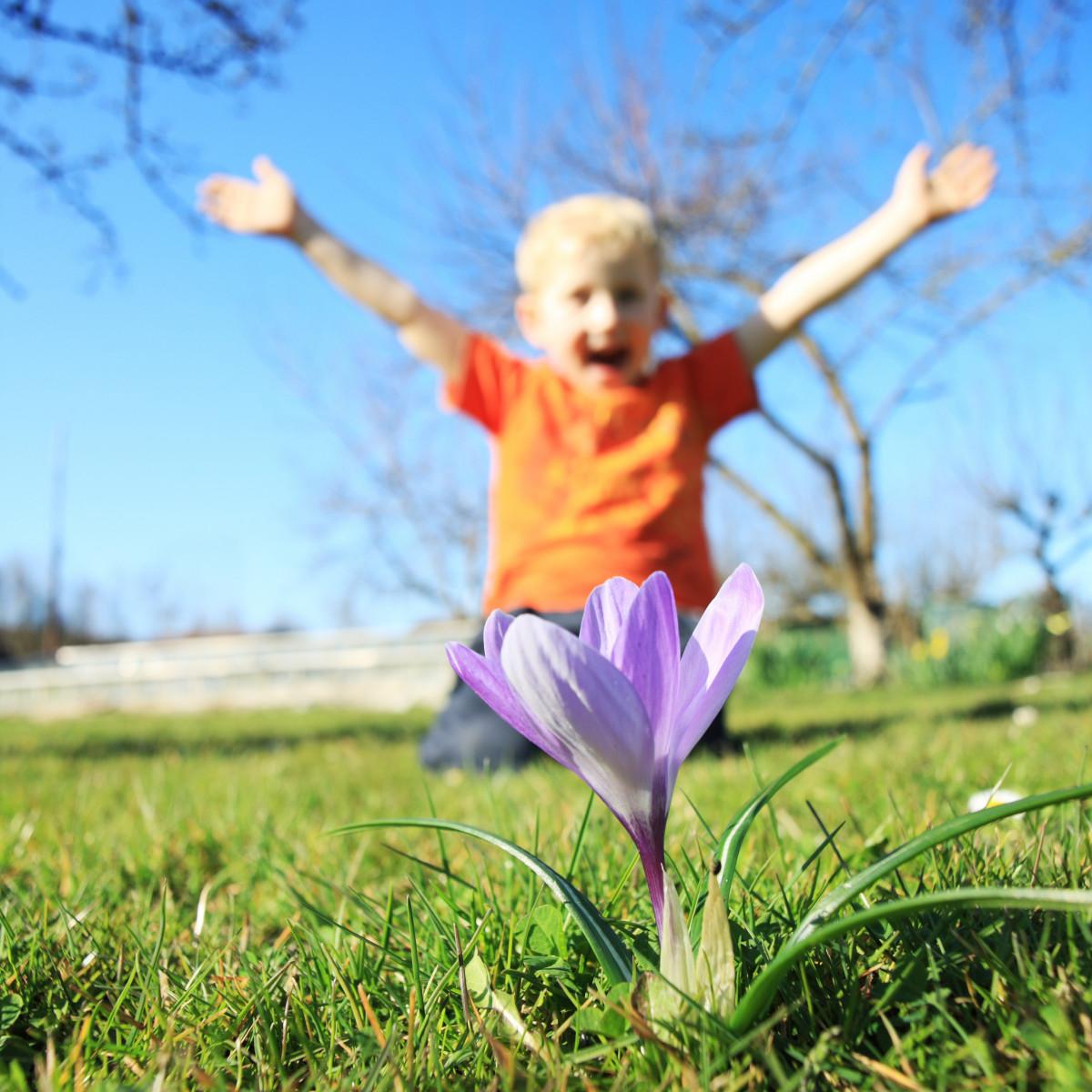 картинки весна с малышками великолепный арочный