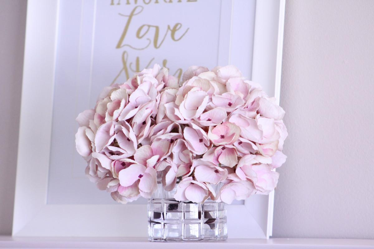 Fotos gratis p talo rosado hortensia florister a - Cortar hierba alta ...